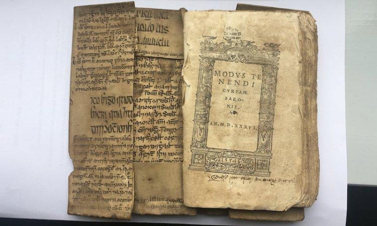 İbni Sina'nın İrlandaca'ya Çevrilmiş Yazısı Bulundu